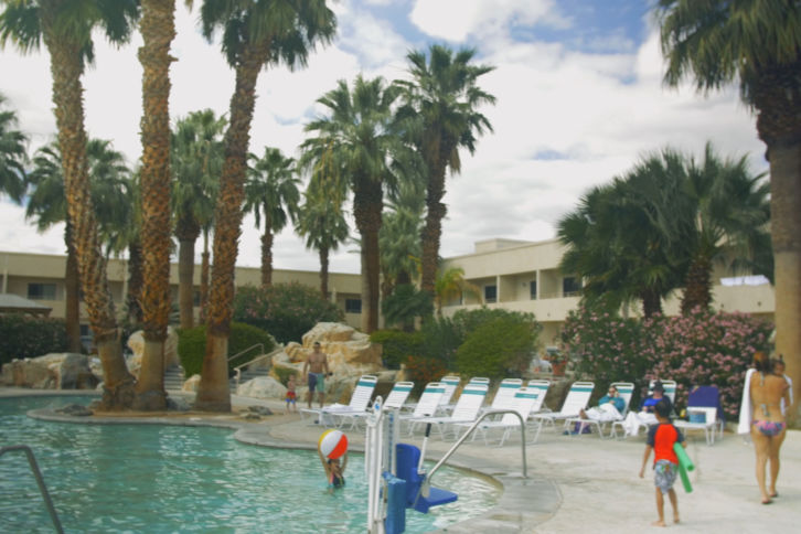 Palm Springs Trees and Pool